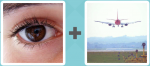 Pictoword level 186 - Eye See Plane Land