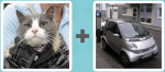 Pictoword Brands level 17 - Pet Cat Smart Car Small