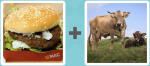 Pictoword Countries & Cities level 10 - Burger Mac Meat Bun Cows